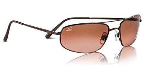 0e6976ce7c Amazon.com  Serengeti Velocity Sunglasses (Aviator)