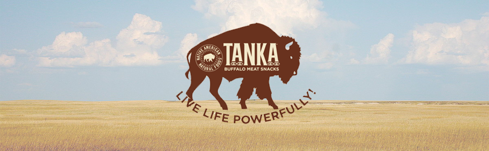 Bison Pemmican Meat Bars with Buffalo & Cranberries by Tanka, Gluten Free,  Beef Jerky Alternative, Slow