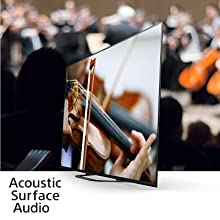 Acoustic Surface Audio technology