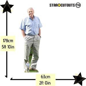 Dimensiones del producto David Attenborough.