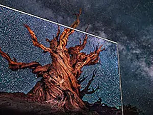QLED with a tree against a starry night sky