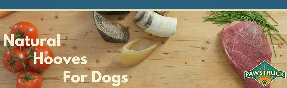 Amazon.com : Natural Cow Hooves for Dogs (10 Pack) - Made