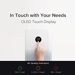 OLED Touch Display
