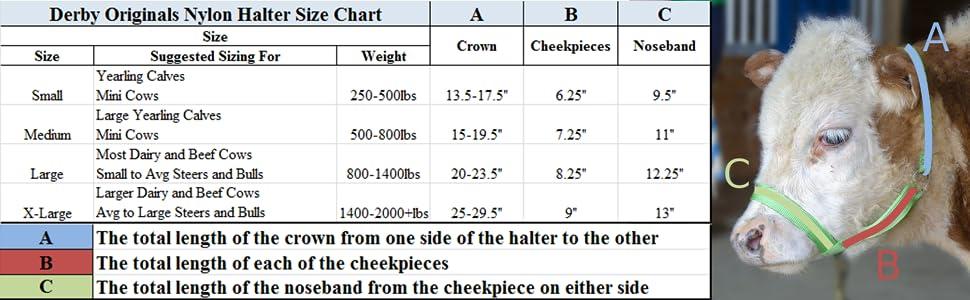 cattle halter size chart