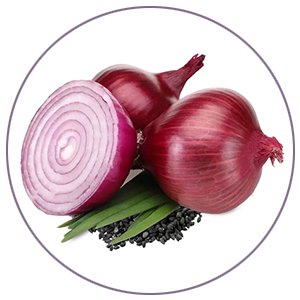 Onion Black Seed Oil