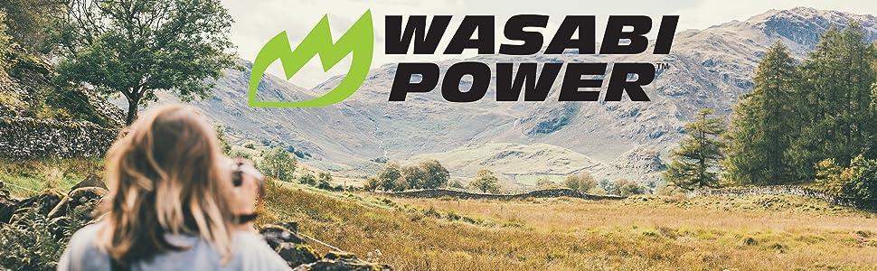 Wasabi Power Logo - Photo by Joseph Pearson on Unsplash