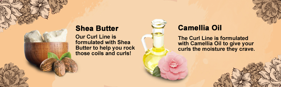 Shea Butter and Camellia Oil for our Curl Line