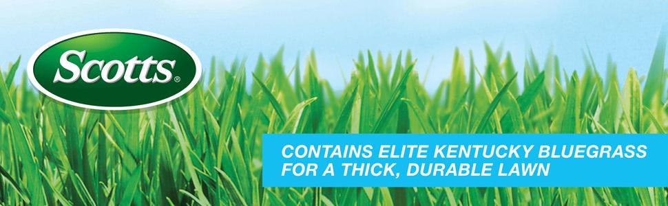 Scotts Turf Builder Grass Seed Kentucky Bluegrass Mix