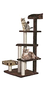 play; pet; stairs; cat; tree; playground