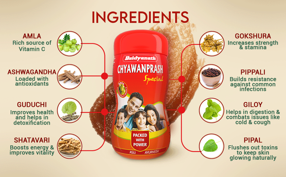 Baidyanath Chyawanprash Special Ayurvedic solution for healthy mind & body