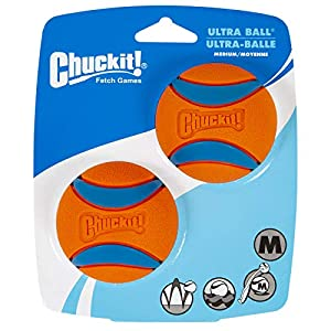 Chuckit! Ultra Squeaker Ball Medium 2-Pack