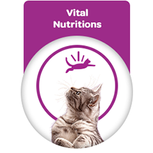 Vital nutrition for my cat