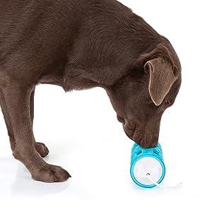 Edupet 06020AD Hundespielzeug, Dog'n'Roll