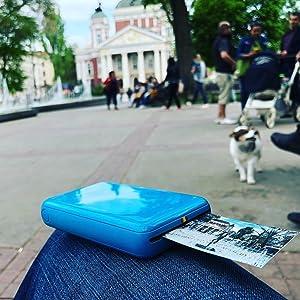 blue zip zink photo printer in park next to dog