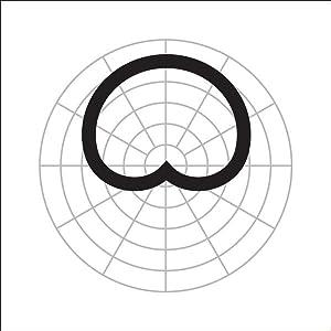 amazon audio technica at2021 cardioid condenser microphone SGS Symbol low mass element