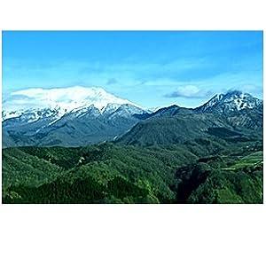 水 天然水 奥大山 アルカリ いろはす 2L 500ml おいしい水