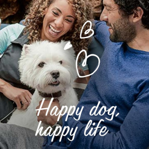 Happy Dog, Happy Life, Cesar Adult Dog Food, Wet Dog Food, Food for Dogs