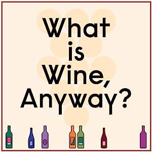 gifts for wine lovers;somm;sommelier;wine bible;wine for beginners;wine pairings;entertaining;bar