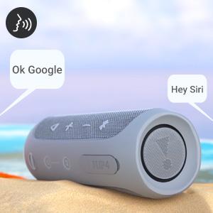 Voice Integration