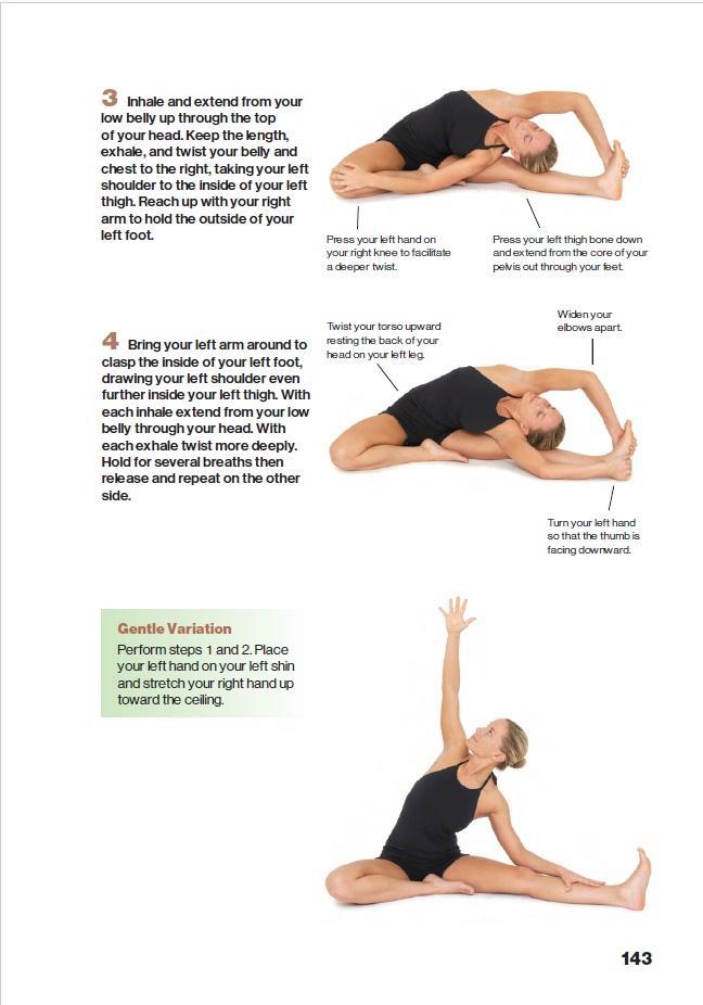 Hatha Yoga Illustrated: Martin Kirk, Brooke Boon, Daniel ...
