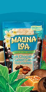 Tree Nuts, Macadamia, Protein, Snack, Healthy, Fat, Omega-6, Omega-3, Hawaii, Roast, Flavored, Salt