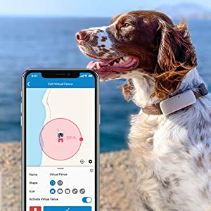 gps tracker for dogs virtual fence tractive location