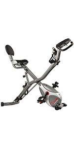 Sunny Health & Fitness SF-B2605 Upright Exercise Bike