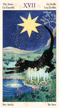 Tarot of Pagan Cats Mini Deck: Lo Scarabeo: 9780738735023: Amazon