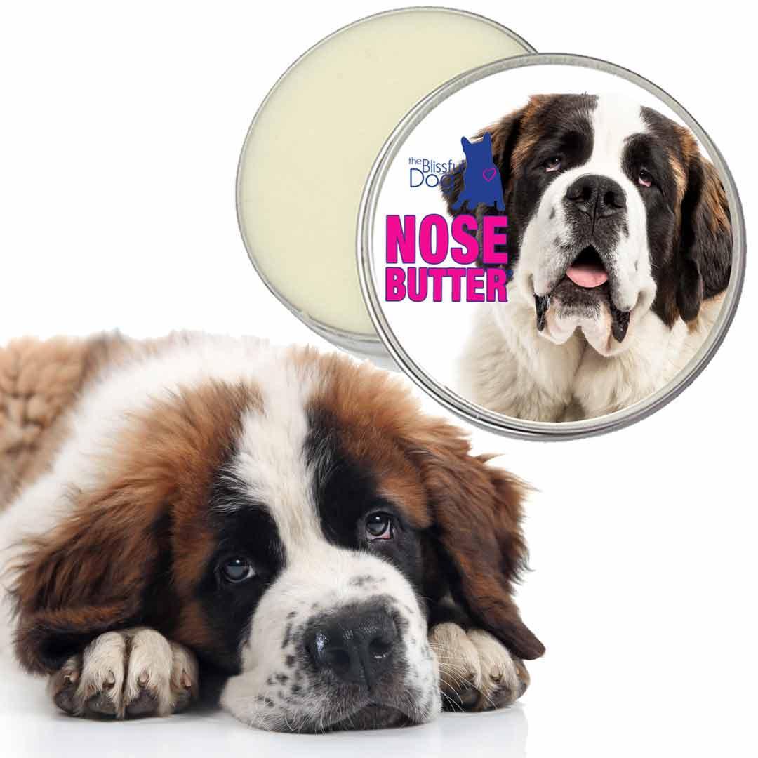 Amazon.com: The Blissful Dog Saint Bernard Nose Butter ...