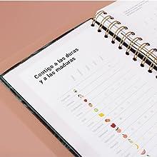 Agenda 2020 UO Semana Vista, Modelo