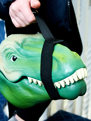 carrying dino case