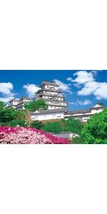 3000ピース ジグソーパズル 究極 パズルの達人 壮麗なる姫路城