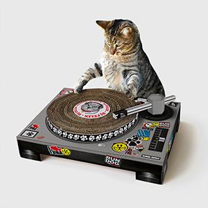 cat deck