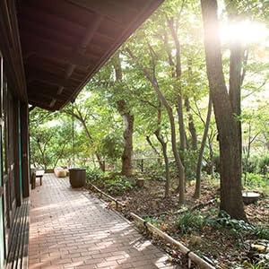 レイモンドハウスと雑木林