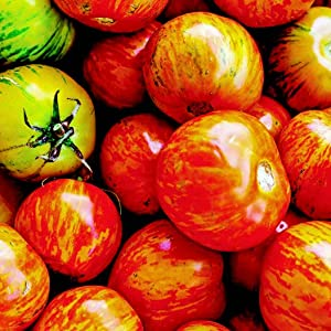 Seeds provide an endless supply of plant varieties. Why settle for red tomatoes when you can grow