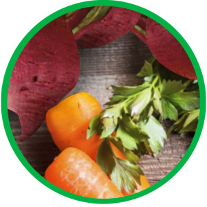 Real Meat, Real Vegetables, Carrots, Beets, Quality Ingredients, Mealtime, Dinner, Nutritious