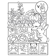 Abc Sign And Color A Beginner S Book Of American Sign Language Dover Coloring Books Hall Susan T 0800759490578 Amazon Com Books