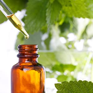 Herbal extract, quality, concentration, formula, standards, nature's answer