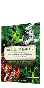 resilience, homestead, garden, food, crisis, soil, food security, grow, regenerative, organic