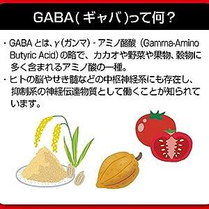 GABA①