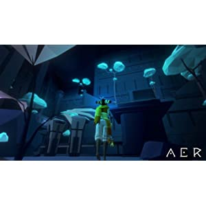 AER Screen 02