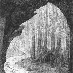 conversations with trees,trees,lithograph,ecology,nature,art,living with trees,preservation,plants