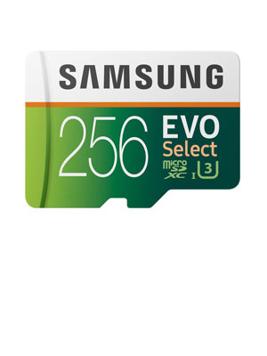 Samsung 256GB MicroSDXC EVO Select Memory Card w/ Adapter