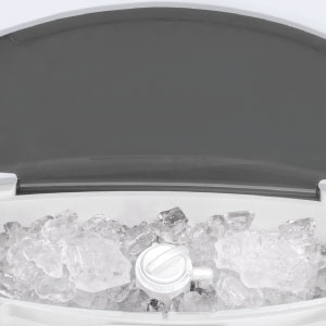 Ice compartment