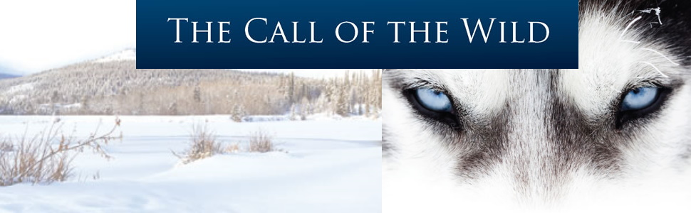 jack london call of the wild