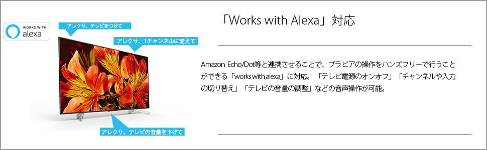 works with alexa アレクサ