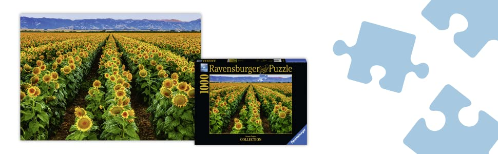 Every Piece is Unique Softclick Technology Means Pieces Fit Together Perfectly Ravensburger Fields of Gold 15288 1000 Piece Puzzle for Adults