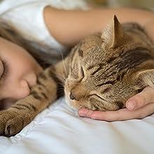 De absorberende stof is veilig, maar moet buiten het bereik van kinderen en dieren worden gehouden.