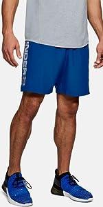 Under Armour UA Raid 8 Short Pantalón Corto, Hombre, Azul ...