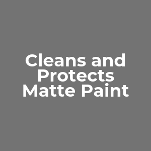 paint protector, auto body paint, paint finisher, car cleaner, matte finish, spot cleaner, fabric